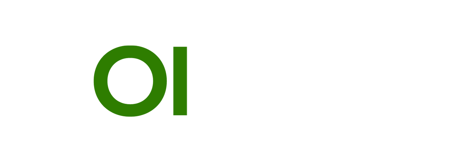 Norzer SEO and Wordpress Performance and Security Services logo